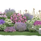 1 Garten, 2 Ideen Ein Vorgarten wird zum Gartenhof
