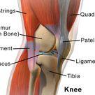 Patella tendonitis – Let's fix it