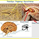 The Ancient Egyptians Knew How to Unleash the Power of the Pineal Gland | Ancient Code