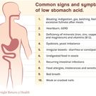What You Did Not Know about Stomach Acid Gastric Acid