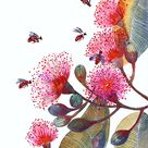 Pink Flowering Gum, flowers and bees, popular nature art print, size 8'x10'/A4 (No. 24)