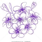 Beautiful Hand Drawn Plumeria Flowers Pretty Stock Vector (Royalty Free) 217576153