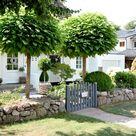Garten Impressionen #Eingang