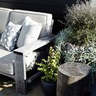 Small Garden Ideas: How to Make the Most of Your Petite Garden Space
