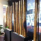 Réinventez la décoration avec les lianes de vignes ou des bambous