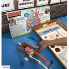 FREEBIES All about my five senses - five senses free printables worksheets - mini unit science