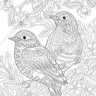 Coloring pages for adults. Lovely Birds Couple. Spring Flowers. Adult coloring pages. Digital jpg-pdf coloring page. Instant download print.