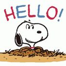 Snoopy Hello GIF   Snoopy Hello   Discover & Share GIFs