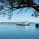 'Anacortes ~ San Juan Island Ferry' by Marjorie Wallace