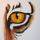 Drawing Guide - The Making Of THe Eye of the Tiger