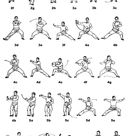 T'ai Chi Chu'an, Chen Family Style: Guides, Instructions, Links,  Bibliography, Resources, Lists, Quotes, and Notes by Mike Garofalo.