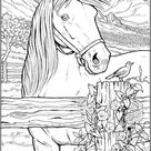 6 Free Horse Coloring Pages
