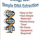 Biology Lab: DNA Extraction by drldf