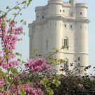 Vincennes Castle's dungeon after restoration - Chateau de Vincennes