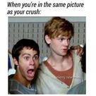 The Maze Runner Images