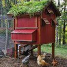 Erstellen Sie ein Gartendach auf Ihrem Hühnerstall! Es hilft den Coop im Somme #garden #wedding #gardenwedding