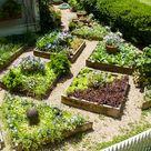 Small Space Edible Landscape Design