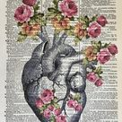 Anatomical Heart, 8x10 Human Heart Art, Cardiology Gifts, Cardiology Nurse, Cardiologist, Nursing Gifts, Floral Heart, Medical Grad Gift