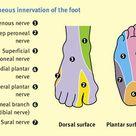 Anaesthesia UK :Lower limb nerve blocks