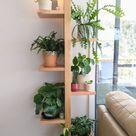 My plant shelf