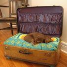 Suitcase Dog Beds
