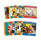 Farm Animal Readers   Oriental Trading