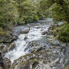 Cleddau River on the Chasm Walk. Greetings Card. Cleddau River on the Chasm Walk, a 200 m walking track near Milford Sound. Fiordland National Park, .
