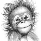 'Happy orang outan baby G2015 121 graphite drawing by S ... ' Poster by Svetlana Ledneva Schukina   Displate