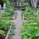 kitchen garden update....2