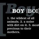 Boy Quotes