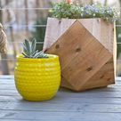 Cedar Fence Pickets