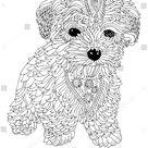 Hand Drawn Dog Sketch Antistress Adult stockvector (rechtenvrij) 727657303