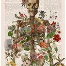 Wall art Anatomy Wall Art - Flower Skeleton - Human Skeleton Art - Anatomy Illustration - Anatomical Decor - Anatomy Print - SKA146PA3