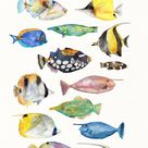 Watercolor TROPICAL FISH Clipart | colorful fish clipart, reef fish, sea clipart, instant download, Ocean life, Sea animals