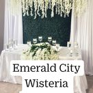 Emerald City Wisteria Backdrop