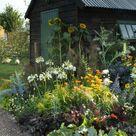 Required Reading: Cultivating Garden Style - Gardenista