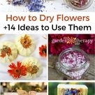 How to Dry Flowers + 14 Dried Flower Petal Projects - Garden Therapy
