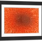 Large Framed Photo. Microscopic view inside of the artery with