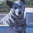Australian Cattle Dog Art BLUE HEELER Canvas PRINT of | Etsy