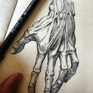 A little anatomy study...