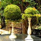 Topiary Wedding