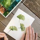 Pretty Green Gingko Botanical Illustration