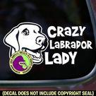 CRAZY LABRADOR Lady Dog Retriever Lab Breed Car Window Sign   Etsy