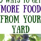 9 Ways to Grow More Food in a Small Garden | HealthyGreenSavvy