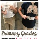 All About My Body and 5 Senses - FREE ACTIVITY - Science Unit 1 — Keeping My Kiddo Busy