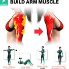 4 BEST EXERCISES TO BUILD ARM MUSCLES