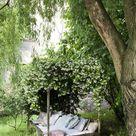 Essential Elements of a Garden Reading Nook