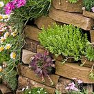 The Perfect Rock Wall Landscaping Plants ~ Bless My Weeds