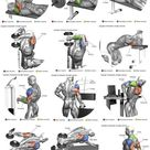 6 Exercises To Get Perfectly Shaped Triceps   GymGuider.com