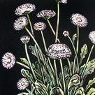 Flower Daisy - April